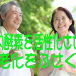 体内酵素を活性化させて老化をふせぐ