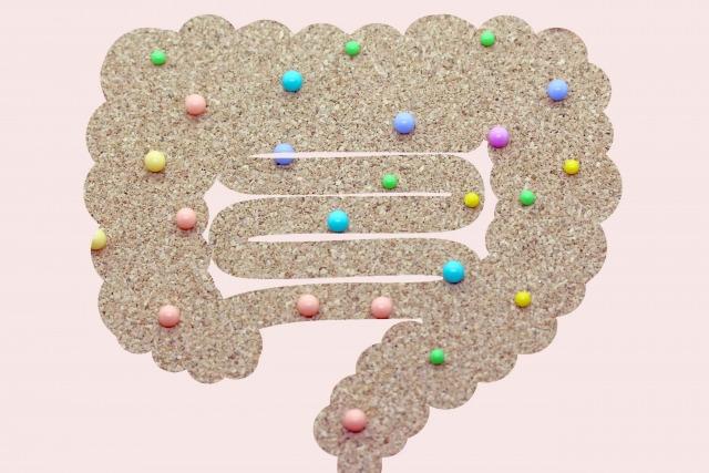 巣ごもりで便秘になった腸のイメージ